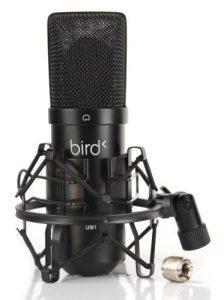 Bird UM1 Microphone USB Noir
