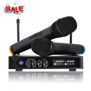 Karaoke Micro sans fil Bluetooth 4.1, Micros karaoké Professionnel avec 2 Microphones à Main pour Chanter, Fête, Conférence, Spectacle, Bar, Réunion, Studio (HUF)