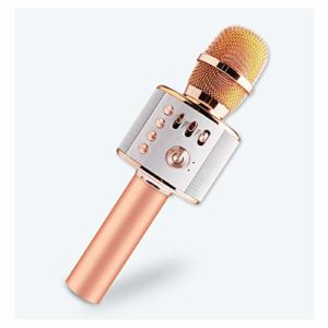 LIWEILA sans Fil Bluetooth Microphone Karaoke, Karaoke Player Portable Speaker pour Apple iPhone Smartphone Android ou PC, pour Home KTV Party extérieure,Rosegold
