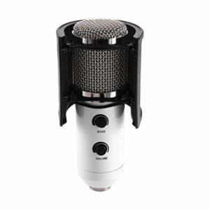Double Couche d'enregistrement Masque filtrant de Microphone Masque de Blindage en métal pour Pare-Brise de Microphone pour Enregistrement Vocal Youtube (Couleur: Noir)