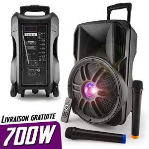 Enceinte autonome sur batterie 12» 700W – Effet Friztal LED – USB/SD/BT/FM + 2 Micros VHF – MyDJ Diams12