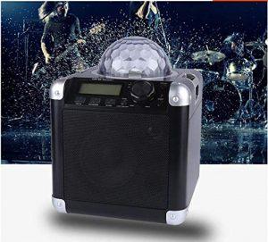 Fête Haut-Parleur avec Disco Lumières Bluetooth Radio Karaoké Télécommande