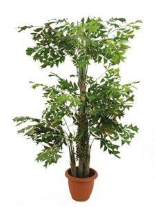Fishtail-Palmbaum, 380cm