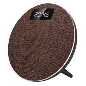 Haut-Parleur sans Fil Bluetooth, Plage de Travail de 10 mètres Haut-Parleur Portable USB BT, Haut-Parleur Mains Libres de Bureau