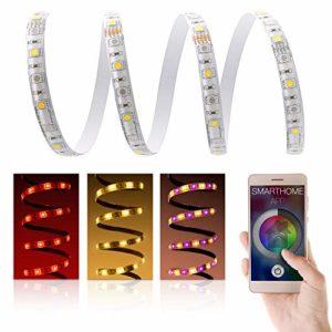 LED Universum RGBW Bande LED pour éclairage Domestique avec Bloc d'alimentation, contrôleur et Pont Philips Hue RGB-WW Premium Band 24 V Bande Lumineuse LED IP65 2 x 30 LED/m 5050 SMD