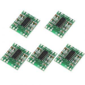 NoBrand 5PCS Mini amplificateur numérique à Deux canaux, Alimentation USB Efficace de 2,5 à 5 V