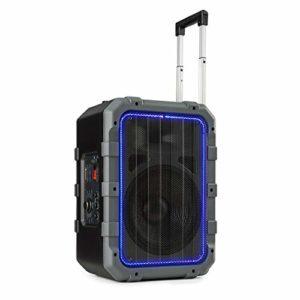 AUNA Spencer – Enceinte de Sono Mobile, Bluetooth, Port USB, Entrée AUX, 2 entrées Micro/Guitare, Batterie puissante, Etanche Norme IPX4, LED RVB, Subwoofer 10″, Gris