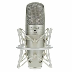 LIUGUANJIANG Microphone à condensateur Professionnel pour Studio d'enregistrement avec pointeur réglable