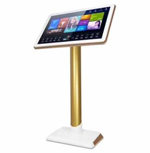 Make Your Home Karaoke Fun: All in One Karaoke Song Machine with 22inch HD Touch Screen for Home Entertainment Karaoke System, Built-in 2TB HDD Filling More Than 4,5000 Songs, and WiFi Function