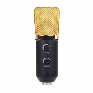 COJFEFG Microphone USB avec intégré Reverb Microphone à condensateur, Convient for Les Ordinateurs, podcasts, Jeux, vidéos, Musique enregistrée, la Voix