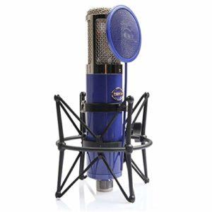 PXYUAN Microphone professionnel pop musique avec support fixe Bleu/blanc
