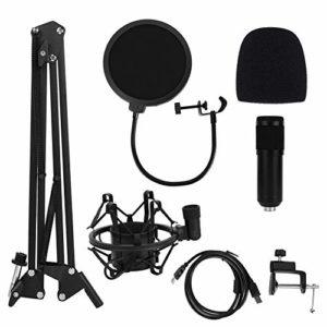 Leftwei Kit Microphone USB 120dB, Ensemble de Microphones d'enregistrement, 5V 150mA 20Hz – 20khz réglable Plug and Play Steel pour Instruments, podcasts pour enregistrements personnels