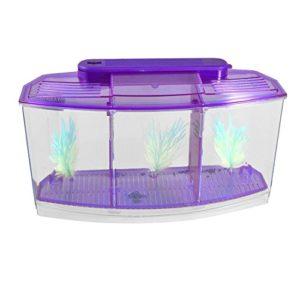 BLxi Mini lampe LED en plastique transparent pour poisson de bureau Violet