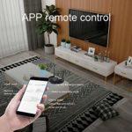 RYRA Récepteur émetteur Bluetooth, Adaptateur Audio sans Fil Bluetooth 5.0 à Faible Latence pour TV, stéréo Domestique