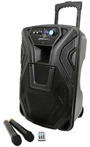 Enceinte active amplifiée karaoké Trolley Haut-parleur portable rechargeable avec Bluetooth, radio, Echo, Eco, USB, SD, MMC, MP3, WMA, microphones sans fil, entrée Guitare, égaliseur