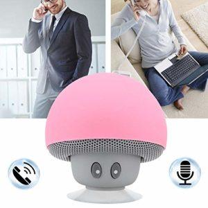 Junluck Haut-Parleur sans Fil de Charge USB, Haut-Parleur de Musique, pour Les Amis des familles