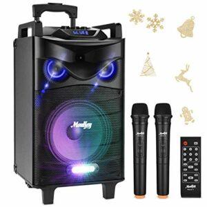 Enceinte Sono Portable Haut-parleur Moukey Bluetooth Sonorisation 650 Watt Karaoké Système Enceinte sonorisation PA système avec DJ Eclairage 2 Micros VHF Radio MP3/USB/SD/FM pour la fête de Noël 12″