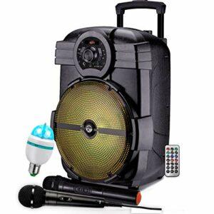 PACK Karaoké ENCEINTE USB MP3-600W KARAOKE PORTABLE + PIED + MICRO SANS FIL + BLUETOOTH + Ampoule Mini Diams