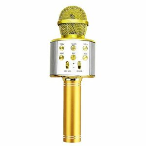 TIUENHAVU Microphone De Poche Karaoké Mic USB Mini Home KTV pour Music Professiona Speaker Player Singing Recorder Mic Gold