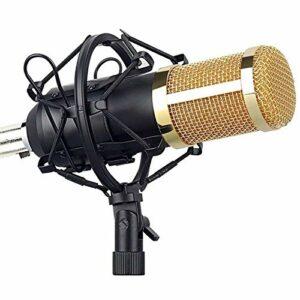 Zengqhui Microphone Kit de Microphone Condenseur d'ordinateur Mic avec Filtre de Carte Son Filtre Applicable à Plusieurs Scénarios (Couleur : Gold, Size : One Size)