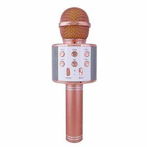 Ba30DEllylelly Microphone sans Fil à condensateur Professionnel karaoké Support de Micro Radio Mikrofon Studio d'enregistrement Studio Micro Machine