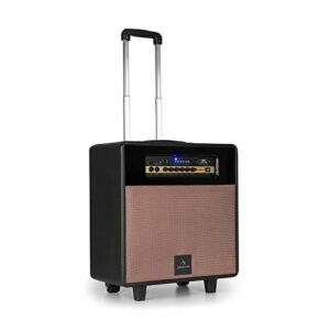 AUNA Streetstar Retro 30 Sono Mobile – Système DJ/karaoké, Bluetooth, Woofer 10″, 100W, USB, SD, AUX, FM, Batterie/Secteur, Micro, Noir