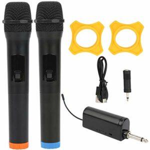 Équipement audio-vidéo de microphone tenu dans la main sans fil pour le karaoké de représentation de scène et les fêtes à la maison