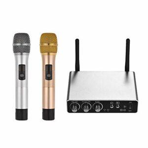Loski Système de microphone à main sans fil avec 2 microphones sans fil et un boîtier récepteur Équipement professionnel professionnel en direct Kit de micro à main pour microphones sans fi