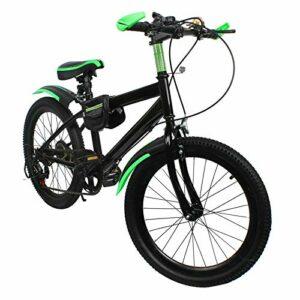 VTT 20″ – En acier carbone – Double frein à disque – Multivitesses – Pour filles, garçons, hommes et femmes – Vert