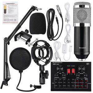 YuanLife Kit d'enregistrement Studio Microphone câblé pour Microphone de karaoké Karaoké BM-800 Compagnie Phantom Puissance BM 800 Condenseur Microphone (Couleur : Black Silver)