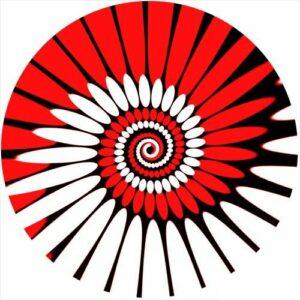 Zomo SLIPMAT-P-RD 2 Feutrines vinyles Paint Rouge