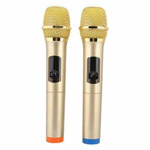 LDDZB Bewinner 2 Kit de microphone sans fil portable avec récepteur pour karaoké, prise haute fidélité, réception à distance de 50 m