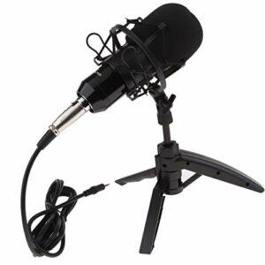 T TOOYFUL Kits de Microphone à Condensateur de Microphone de Karaoké Mikrofon pour L'enregistrement Vocal Audio – argent, comme décrit