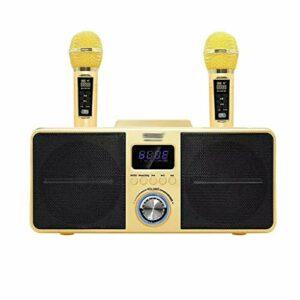 YWSZJ Double Microphone sans Fil Bluetooth Haut-Parleur Mobile sans Fil Stéréo sans Fil Stéréo Noir 30W Set (Color : Yellow)