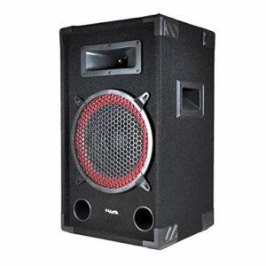 Enceinte passive sono DJ PA 10″/25cm 250W 2 Voies BassReflex IBIZA SOUND STAR10/250