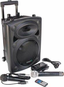 Ibiza PORT8UHF-BT Enceinte Portable 400 W Noire avec micros professionnels