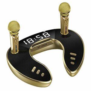 YWSZJ Haut-Parleur Bluetooth 5.0 30 W avec Deux Microphones Haut-Parleur de karaoké sans Fil Mobile Party stéréo sans Fil Super Bass (Color : Gold)