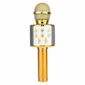 Adaskala Microphone Bluetooth portable sans fil avec haut-parleur professionnel pour écouter de la musique