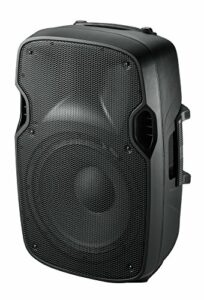 Ibis XTK15 Enceinte Sono Moulée Passive 15″/38 cm 600 W Noir
