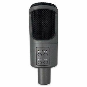 LIUCHEN Microphone DivertissementMicrophone d'ordinateur à condensateur USB Plug and Play Microphone en Streaming avec Support muet Enregistrement Audio pour Chanter Les Jeux, Gris