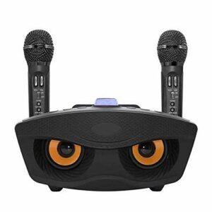 TWDYC Haut-parleurs Bluetooth Double avec 2 micros sans Fil, extérieur Accueil KTV Microphone stéréo Fort 20W Speaker Set, Compatible avec iOS, Android, PC et Autres Smart Devices (Color : Black)