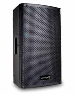 Audibax | Pro TX10 Haut-parleur 10″ – Haut-parleur Profesionnel – Bi-Amplifié 250 Watios RMS – Puissance : 700 W Pic – Classe D A + B – Pression Acoustique : 132 dB – Couleur : Noir – Poids 13 Kg