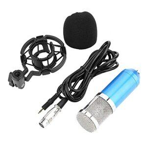 Avec un microphone à condensateur audio à montage antichoc, enregistrement sonore de la parole du micro