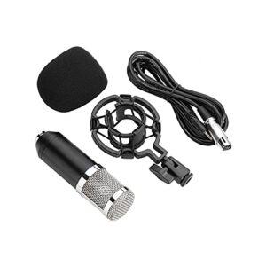 Ensemble de microphones Composants importés Unité Le son est plus pur Microphone pour Voice-over Sound Studio pour Radio Broadcasting Studio