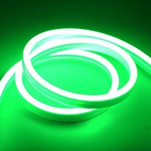 ZZSSC Bandes LED Neon LUMIÈRE DE LED 12V LED SPABLES CUTABLES SMD2835 120LÉDS / M Tube de Corde Flexible étanche pour Le Signe de Bricolage Décoration de Vacances de Noël(Green,5m)