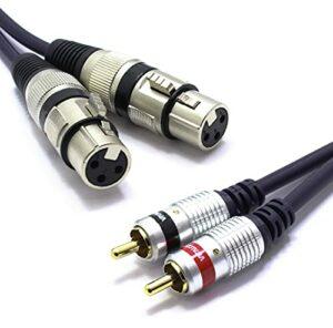Vitalco Lot de 2 câbles XLR femelle vers 2 RCA stéréo 3 m