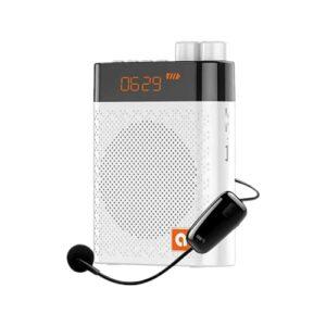 Amplificateur vocal portable DYBITTS Amplificateur vocal sans fil Microphone de l'enseignant Haut-parleur Bluetooth Lecteur MP3 Support d'enregistrement Carte TF pour les entraîneurs de présentation